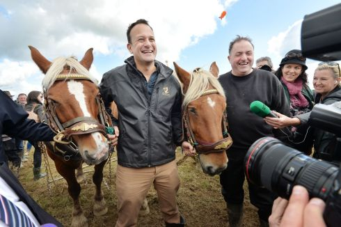 Taoiseach Leo Varadkar with David King and  French heavy horses Jack and Jill at the special horse class ploughing competition