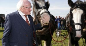 President Michael D Higgins visits the under 40 horse plough competition on the opening day of the National Ploughing Championships in Screggan, Co Offaly. Photograph: Laura Hutton/Collins Photo Agency