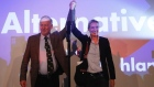 German election: far-right AfD vow to 'take our country back'