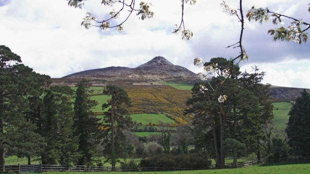 Ballinteskin Stud is situated close to Roundwood and Enniskerry, Co Wicklow, with views of the Sugar Loaf in the distance.