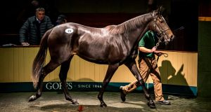 Lot 35, a yearling filly by Galileo, was sold by Godolphin at the Goffs Orby sale in Co Kildare on Tuesday for €1.2 million. Photograph: Goffs