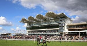 A general view of the Cambridgeshire meeting at Newmarket. Photograph: Julian Herbert/PA Wire
