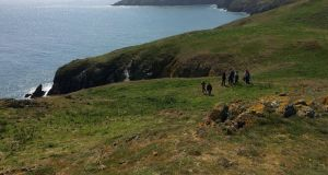 Lambay island, Co Dublin: limited numbers can walk the island, with Gerry Grimes of skerriesseatours.ie as guide