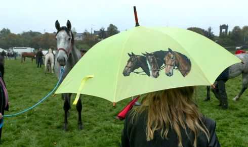 FAIR WEATHER: An attendee takes shelter during rain at the Ballinasloe Horse Fair. Photograph: Joe O'Shaughnessy