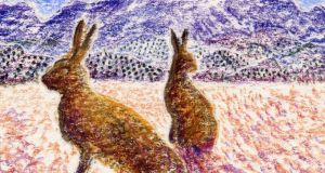 The brown hare was first brought to Ireland from Britain for coursing in the mid-19th century. Drawing: Michael Viney