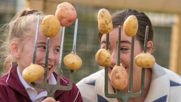 National Potato Day: Theresa Donohoe from Arles National School, in Co Laois, celebrates the spud with Deirdre O'Shea of Agri Aware. Photograph: Patrick Browne