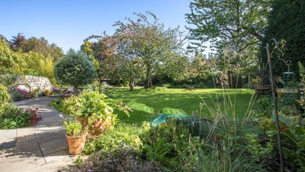 Rectangle-shaped, the garden has high evergreens, a venerable cherry tree, ivy, bamboo, lavender and hydrangea. There is also a patio and garden shed.