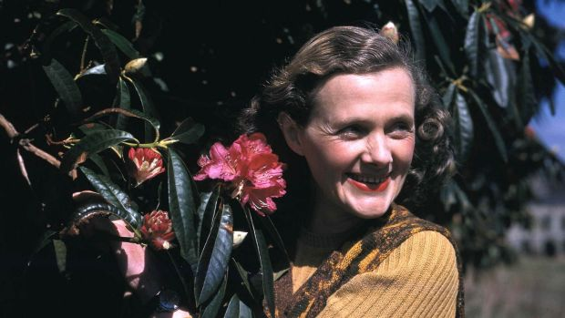 Daphne du Maurier: the novelist in 1947, shortly after the filming of Hungry Hill. Photograph: Popperfoto/Getty