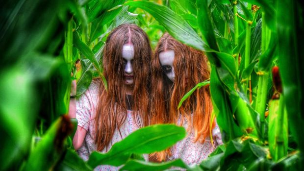 Enter the Spooktacular Horror Farm at Grove Gardens near Kells, Co Meath – if you dare