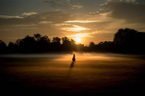EARLY-MORNING MIST: Parc de la Tête d'Or, in the French city of Lyons. Photograph: Jeff Pachoud/AFP/Getty