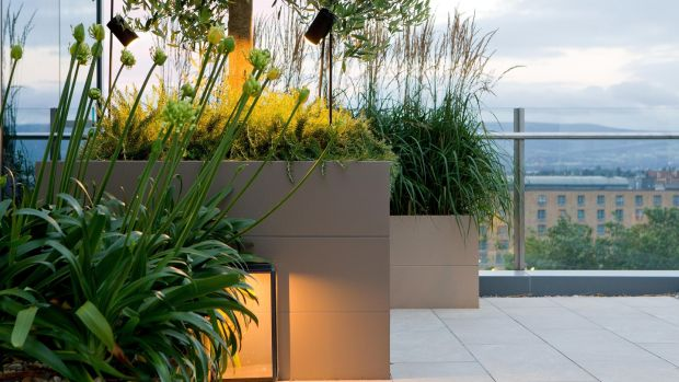 City rooftop garden designed by Paul Martin