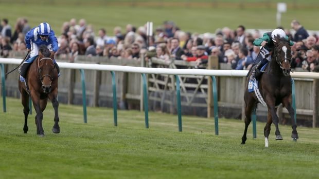 Limato secured his first win of the season at Newmarket. Photograph: Alan Crowhurst/Getty