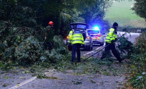 Gardaí clearing the road near Enniskerry, Co Wicklow from a fallen tree during storm Ophelia. Photograph: Cyril Byrne/The Irish Times