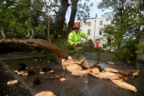 Tree surgeon James Moran working on a fallen tree at Bayswater Terrace, Sandycove during storm Ophelia.   Photograph: Cyril Byrne / The Irish Times