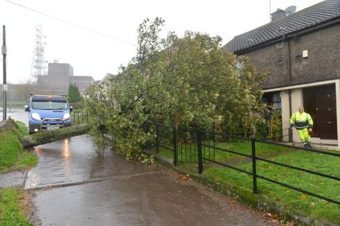 Hurricane 'Ophelia'.... fallen tree Knocknaheeny, Cork City. Photograph: Michael Mac Sweeney/Provision