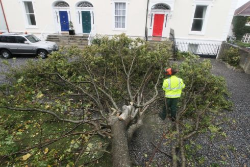 16/10/17 James Moran tree services deals with fallen tree at Sandycove Dublin this afternoon as Hurricane Ophelia?passes?through..Pic Stephen Collins/Collins Photos