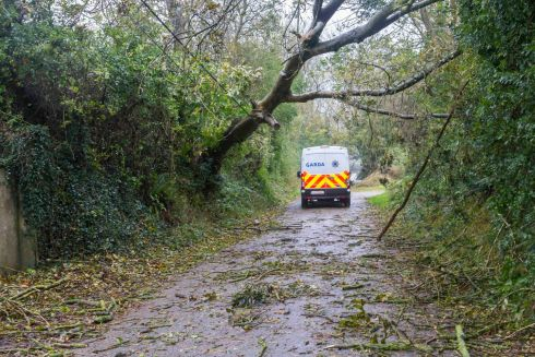 Hurricane Ophelia. Garda vehicle near Aiglish, Co. Dungarvan where a fatality occured when a tree landed on a car.  Photograph: Patrick Browne