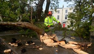 Tree surgeon James Moran working on a fallen tree at Bayswater Terrace, Sandycove, Dublin, on Monday. Photograph: Cyril Byrne