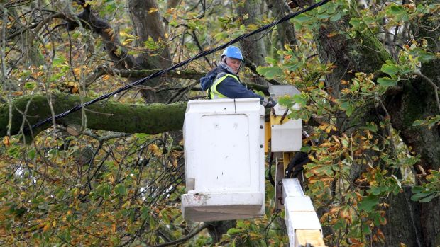 An ESB worker checking a line hit by a fallen tree at Salthill, Galway, during the storm. Photograph: Joe O'Shaughnessy