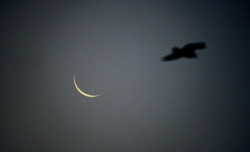STORM OPHELIA: A crescent moon appears at dawn as Storm Ophelia passes over the country. Photograph: Cyril Byrne/The Irish Times