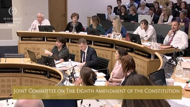 The Joint Committee on the Eighth Amendment of the Constitution, sitting on Wednesday. Photograph: Oireachtas TV