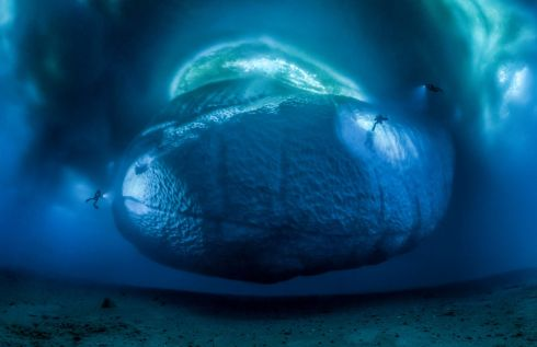 """The ice monster by Laurent Ballesta"", winner of the Earth's Environments category in the Wildlife Photographer of the Year 2017 competition. 147 stitched images on the underside of an iceberg, Ilot de la Vierge, Géologie Archipelago, Antarctica.   Photograph:  Laurent Ballesta/Wildlife Photographer of the Year/PA"
