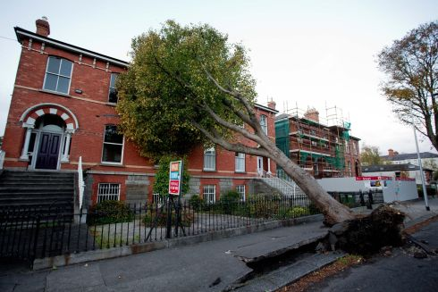 RUMBLE IN RANELAGH: A fallen tree on Northbrook Road, Ranelagh, Dublin, in the wake of Storm Ophelia. Photograph: Tom Honan