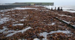 Seaweed left by Storm Brian at Silver Strand in Galway after winds of up to 70mph battered coastal areas. Photograph: PA Wire