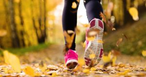 Whether you are running on trails, woodland or in the city parks, leaves can be covering up holes, thorns and tree stumps