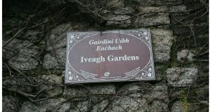An online petition headed 'Save The Iveagh Gardens' has attracted more than 10,000 signatures in less than a week. Photograph: Bryan O'Brien.