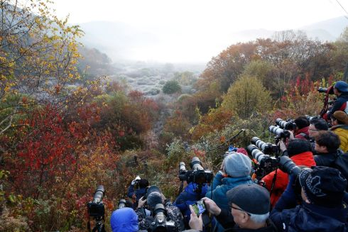 PHOTO STOP: Photographers capture a forest's autumn-coloured trees covered with mist in Inje, Gangwon-do, South Korea. Photograph: Jeon Heon-Kyun/EPA