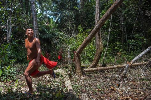 BRAZIL: A Waiapi man runs after cutting down a tree to make a manioc field, at the Waiapi indigenous reserve in Amapa state in Brazil. Photograph: Apu Gomes/AFP/Getty Images