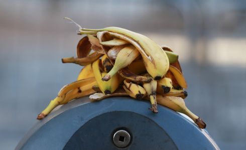 Layers of banana skins on the top of a bin during the dublin Marathon. Photograph: Nick Bradshaw/The Irish Times