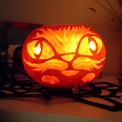 """Pumpcat"" by Edie (7) and Cormac (42) Donnelly, Sandyford"