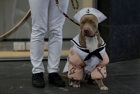 A man poses for a picture with his dog dressed as a mariner during a Halloween dog parade in Monterrey, Mexico. Photograph: Daniel Becerril/Reuters