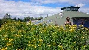 Gyreum Eco-lodge, Co Sligo: The green roof, made of torched-on mineral felt, slopes into the landscape.