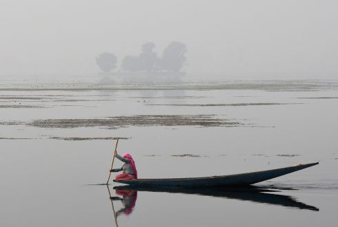 CALM WATERS: A Kashmiri resident rows a boat across a lake in Srinagar. Photograph: Tauseef Mustafa/AFP/Getty Images