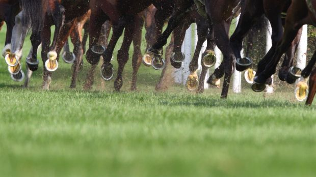 Join the racing fun at Leopardstown from December 26th to December 29th. Photograph: iStock