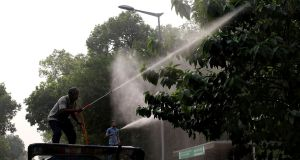 An Indian Municipal worker sprays water on trees to settle environmental dust in New Delhi on Friday. Photograph: Rajat Gupta/EPA