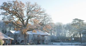 Visit Beyond at Fota Island Resort for a magical Christmas experience