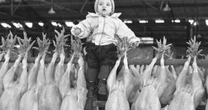 One-year-old Sean Dunne from Ashford at the first turkey auction at Ashbourne, Co Meath. Photograph: Eddie Kelly