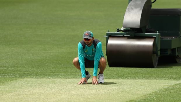 Nathan Lyon of Australia inspects the pitch on Wednesday. Photograph: Ryan Pierse/Getty Images
