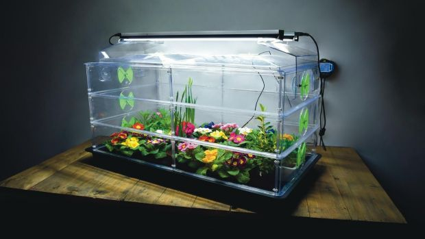 Vitopod thermostatically controlled heated propagator (quickcrop.ie, from €148, with Sunblaster horticultural lamps from €99)