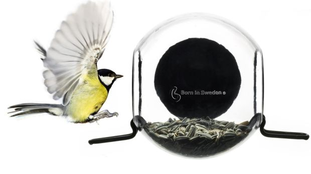 Born in Sweden bird-feeder which can be fixed onto a window (formalityonline.com, €22)