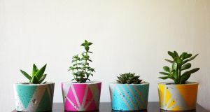 Colourful cast-concrete handmade planters designed by Dublin-based Ail+El