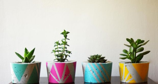 colourful cast concrete handmade planters designed by dublin based ailel