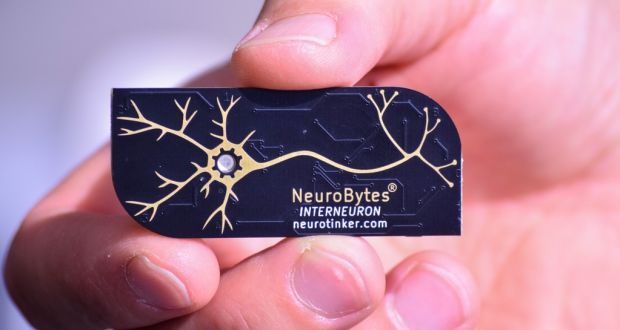 Build Your Own Electronic Brain With Neurobytes