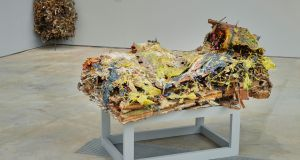 Body Farm: Wood, glue, acrylic, dust, 2013. All photographs by Ros Kavanagh