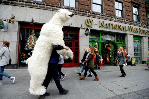 POLAR WIND: Danny Balan carries a giant polar bear to the National Wax Museum Plus on Westmoreland Street in Dublin. Photograph: Cyril Byrne/The Irish Times