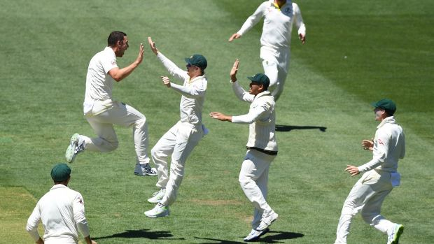 Australian players celebrate after taking the wicket of Joe Root. Photo: Dave Hunt/EPA
